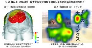 45歳以上の脳と視線の反応