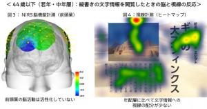 44歳以下の脳と視線の反応